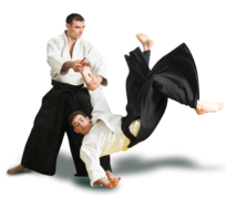 sport&Aikido png image.