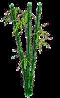 nature&Bamboo png image.