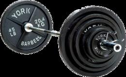 sport & barbell free transparent png image.