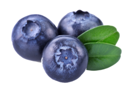 fruits&Blueberries png image.