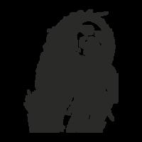 celebrities&Bob Marley png image.