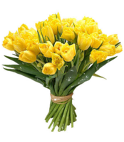 flowers&Bouquet of flowers png image.
