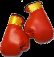 sport&Boxing gloves png image.