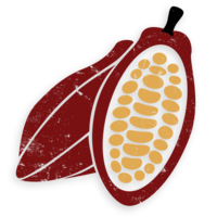 fruits&Cacao png image.