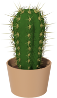nature&Cactus png image.