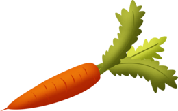 vegetables&Carrot png image.
