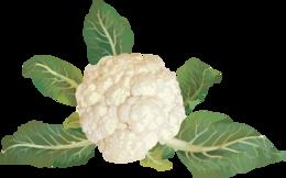 vegetables&Cauliflower png image.