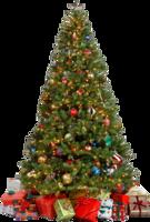 holidays&Christmas tree png image.