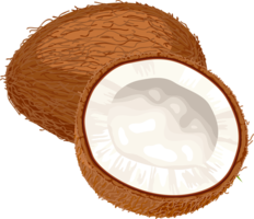 fruits&Coconut png image.