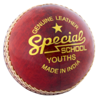 sport&Cricket png image.