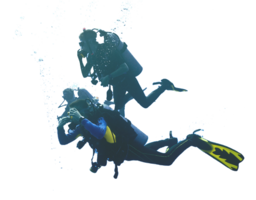 people&Diver png image.