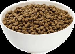 animals&Dog food png image.