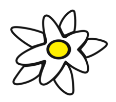 nature&Edelweiss png image.