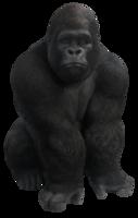 animals&Gorilla png image.