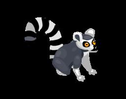 animals&Lemur png image.