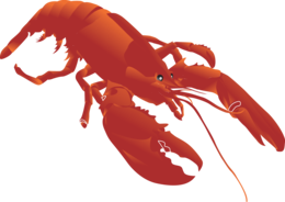 animals&Lobster png image.