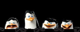 heroes&Madagascar penguins png image.