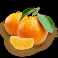 fruits&Mandarin png image.