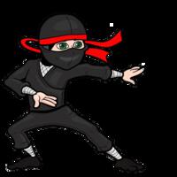 people&Ninja png image.