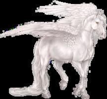 fantasy&Pegasus png image.