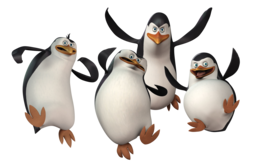 animals&Penguins png image.