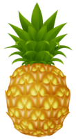 fruits&Pineapple png image.