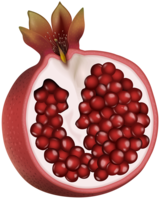 fruits&Pomegranate png image.