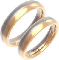 jewelry&Ring png image.