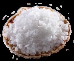 food&Salt png image.