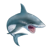 animals&Sharks png image.