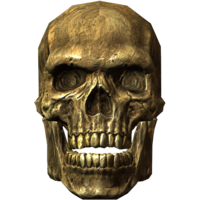 people&Skull png image.