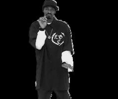 celebrities&Snoop Dogg png image.