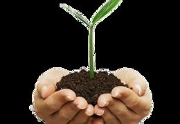nature&Soil png image.