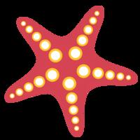 animals&Starfish png image.