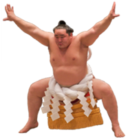 sport&Sumo png image.
