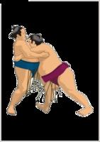 sport & sumo free transparent png image.