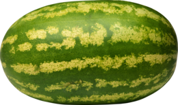 fruits&Watermelon png image.
