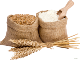 nature&Wheat png image.