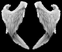 fantasy&Wings png image.
