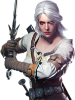 heroes&Witcher png image.